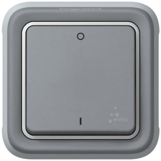 Выключатель двухполюсный серый, Plexo