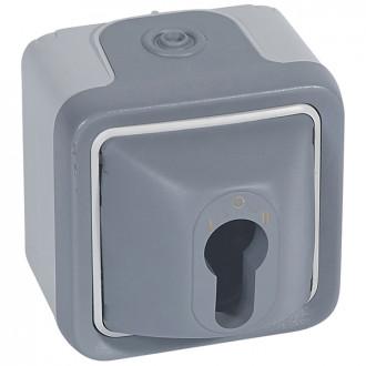 Выключатель с цилиндром серый, Plexo